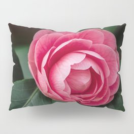 Blooming Pink Perfection Camellia Japonica Pillow Sham