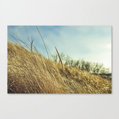 Low POV 2 Canvas Print