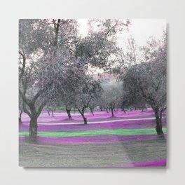 fishing olives viola-2 Metal Print