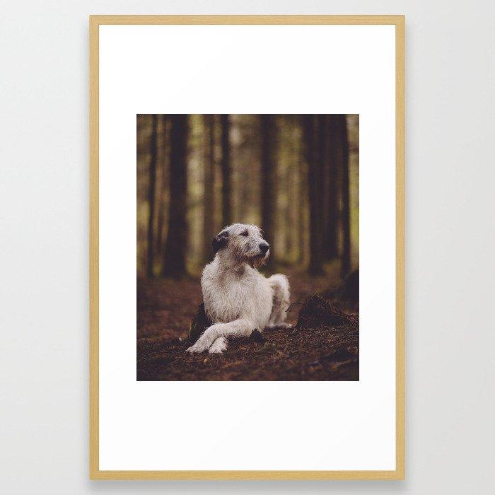Sheelagh Framed Art Print
