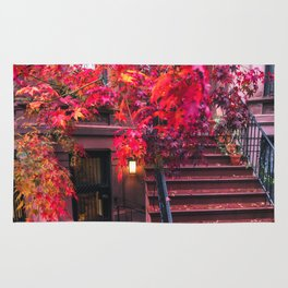 New York City Brooklyn Bicycle and Autumn Foliage Rug