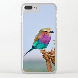 wildlife in Kenya #society6 #decor #buyart Clear iPhone Case