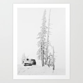 """ Timberline "" - Print Art Print"