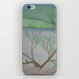 Banks of the Canal iPhone Skin