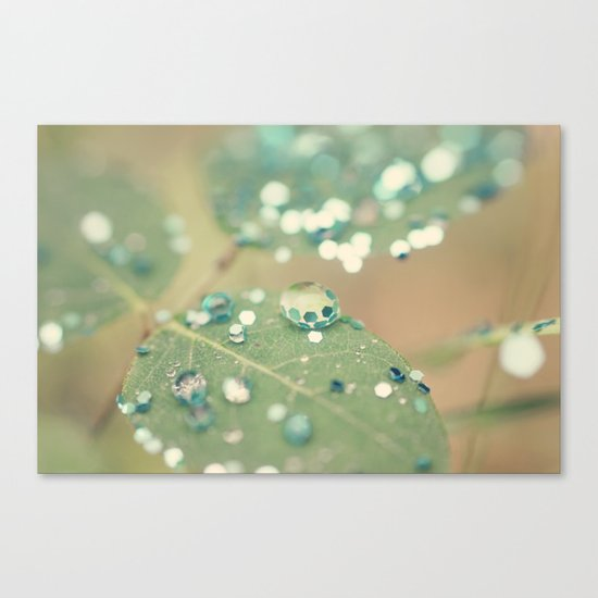 Playing in the Rain Canvas Print