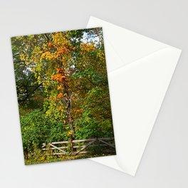 Nature's Chorus Stationery Cards