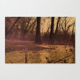 The fall The fog The swamp the drama Canvas Print
