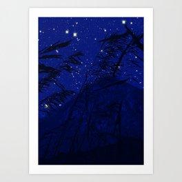SkyB - Night Art Print
