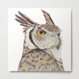 Quintus the Owl Metal Print