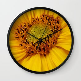 Sunflower heart Wall Clock