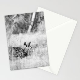 DONT WAKE THE BUCK Stationery Cards
