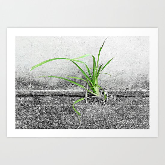 A Touch of Green Art Print