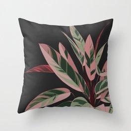 Calathea Throw Pillow