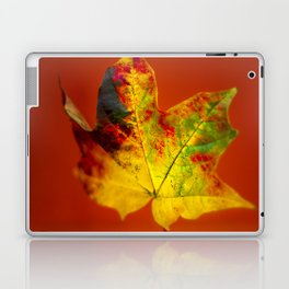 Autumn Maple Leaf Laptop & iPad Skin