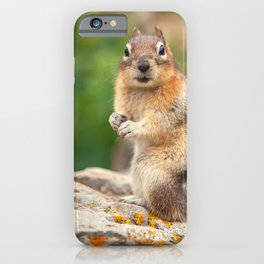 Straight Look iPhone Case