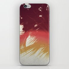 Rainforest iPhone & iPod Skin