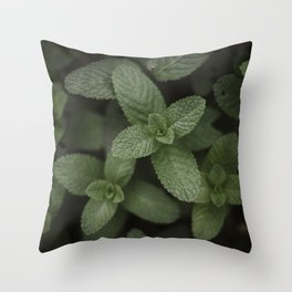 Mint at a desert farm in The Negev, Israel Throw Pillow
