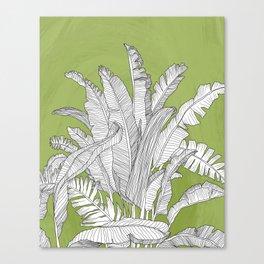 Banana Leaves Illustration - Green Canvas Print