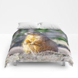 The Good Gopher Comforters