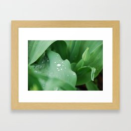 I Dream of Spring Framed Art Print