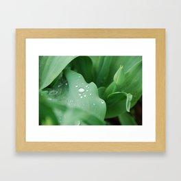 I Dream of Spring Framed Art Print