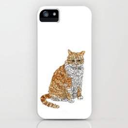 Tabby Bunny Kitty iPhone Case