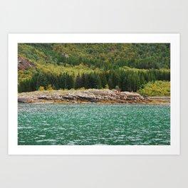 nature - colours Art Print