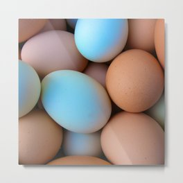 Colorful Chicken Eggs Metal Print