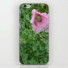 Poppies in rain iPhone Skin