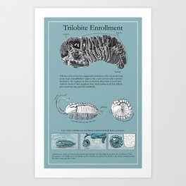 Trilobite Enrollment poster Art Print