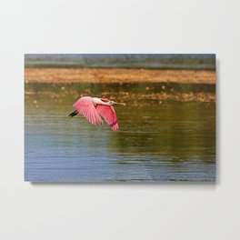 The Flyover Metal Print