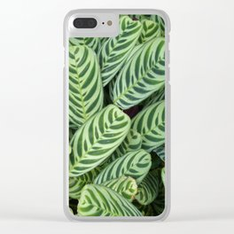 Multi Green leaves closeup Clear iPhone Case