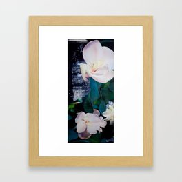 Longwood Framed Art Print