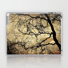 Branches Pattern and Texture Laptop & iPad Skin