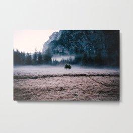 Yosemite Meadow Metal Print