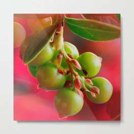 Green Berries Red Background #society6 #decor #buyart Metal Print