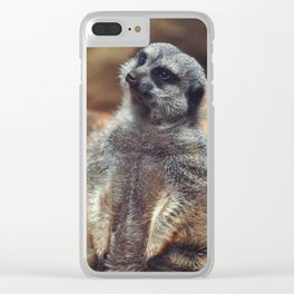Derp Clear iPhone Case