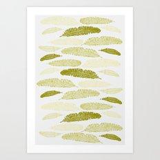 Feathers - Sage Art Print