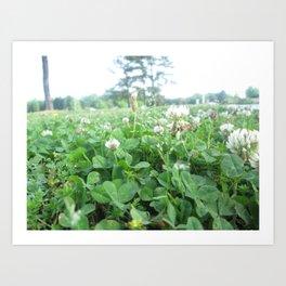 More Wildflowers & Grass Art Print