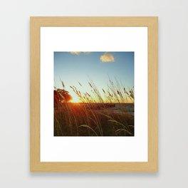 Bay Breeze Framed Art Print