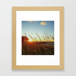Bay Breeze Framed Art Print