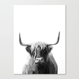 Highland cow | Black and White Photo Canvas Print