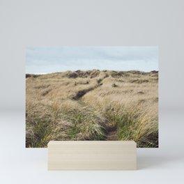 Oregon Dune Grass Adventure - Nature Photography Mini Art Print