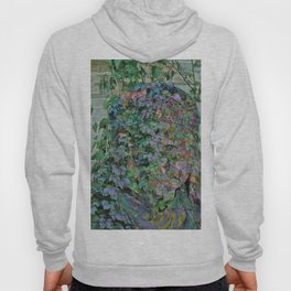 Nature Abstract ### Hoody