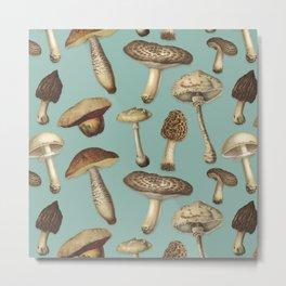 Fun Fungi Mushrooms No. 2 Metal Print