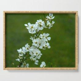Apple tree blossom Serving Tray