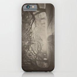 Avenue of Oaks iPhone Case