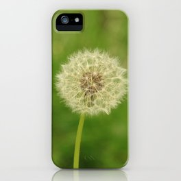 Spring Dandelion iPhone Case
