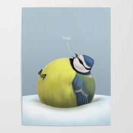 Holiday doom (blue tit) Poster
