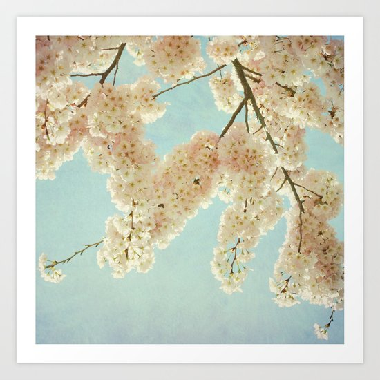 Blue Sky and Blossoms Art Print